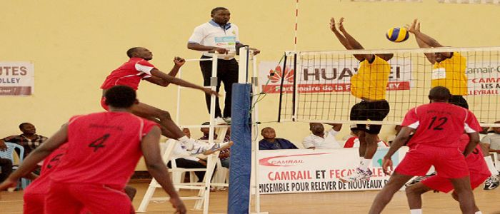 Volley-ball: voici les finalistes