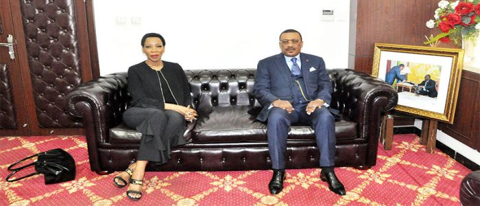 Cooperation: South Africa To Invest in Cameroon Energy Sector