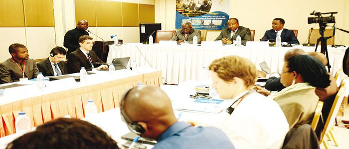 Economic Planning: UN Recommends Improved Modelling