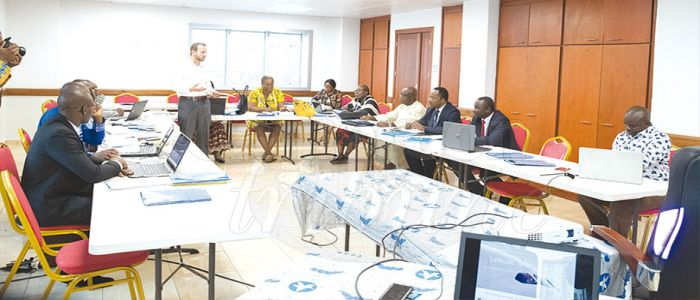 Image : Civil Aviation: Cameroon To Launch English Language Proficiency Centre